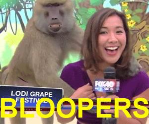 définition de bloopers